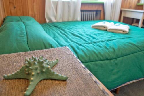 hostel kosh cama matrimonial